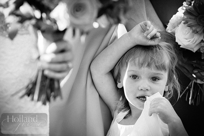 Lionscrest-Manor-Wedding_Holland-Photo-Arts_LG-2037-38x
