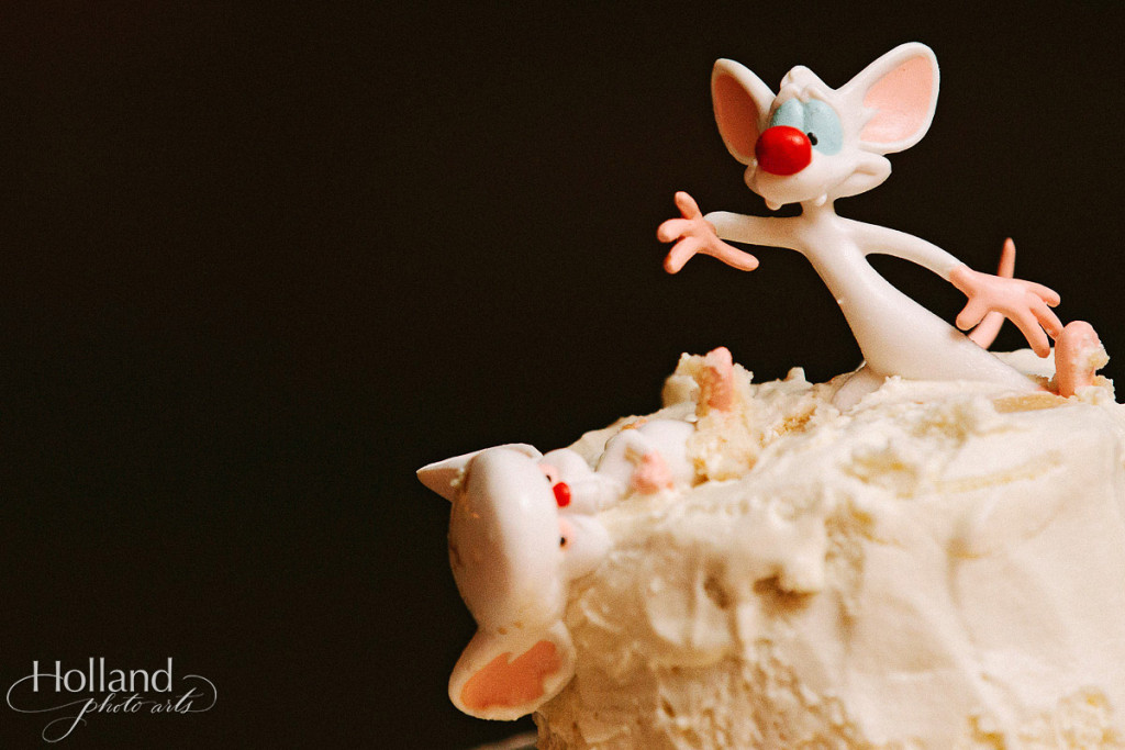 Wedding cake with Pinky & the Brain